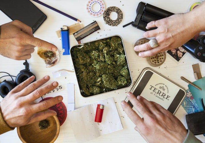 cannabis covid19